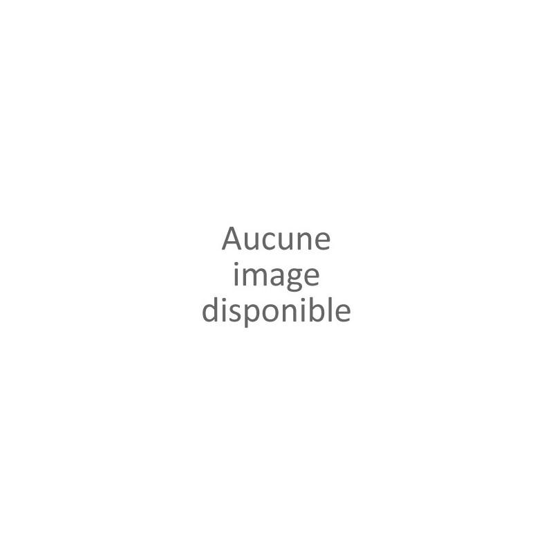 Coffre rotomoule CAP 50 L VIDE 500X330X330